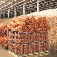 Storage of fruits and vegetables in Kazakhstan
